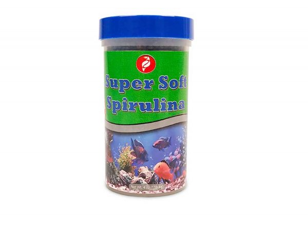 Spirulina Fish Food Front by Pisces Pros